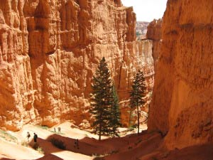 Queens Garden Trail, Bryce Canyon, Utah