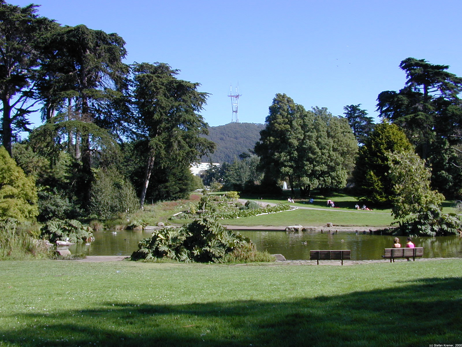 Botanischer Garten, Golden Gate Park, San Francisco, Kalifornien